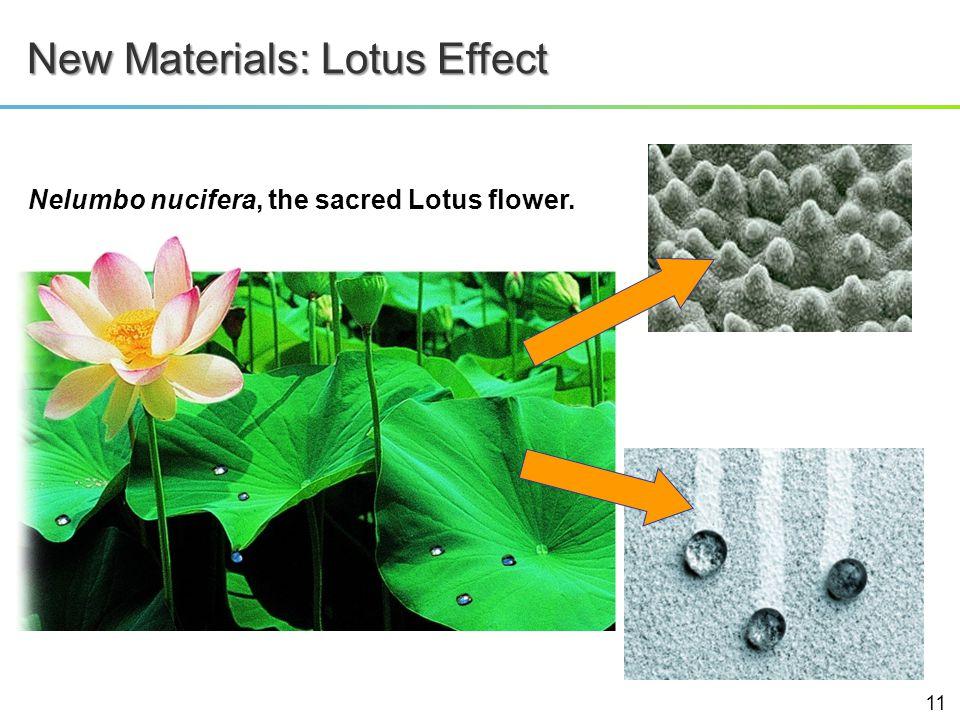 New Materials: Lotus Effect