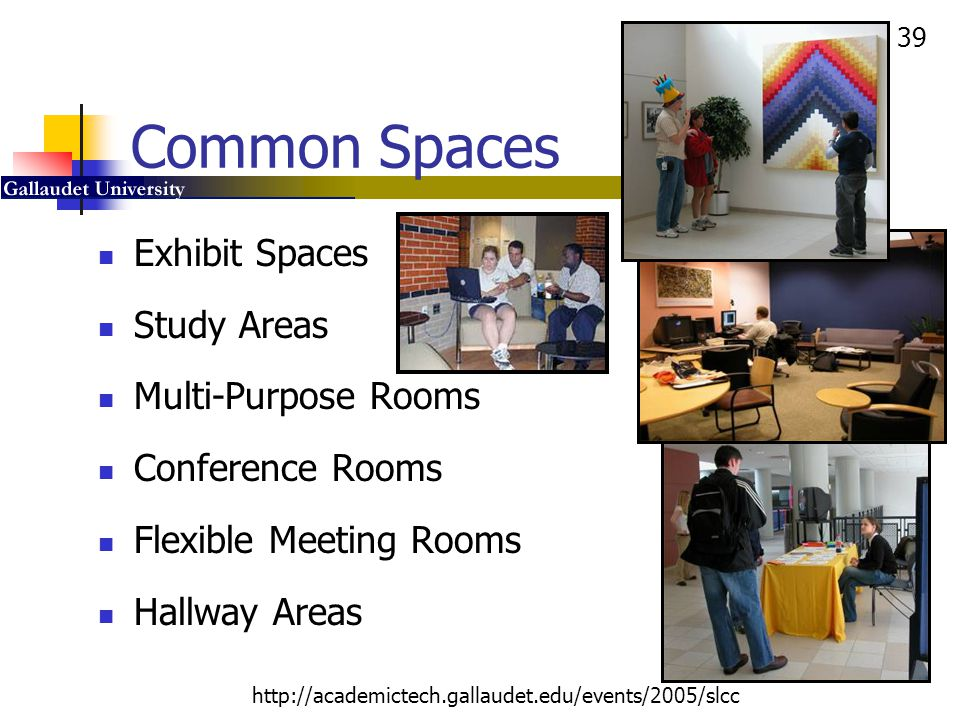 Common Spaces Exhibit Spaces Study Areas Multi-Purpose Rooms