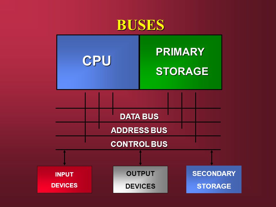 BUSES CPU PRIMARY STORAGE DATA BUS ADDRESS BUS CONTROL BUS OUTPUT