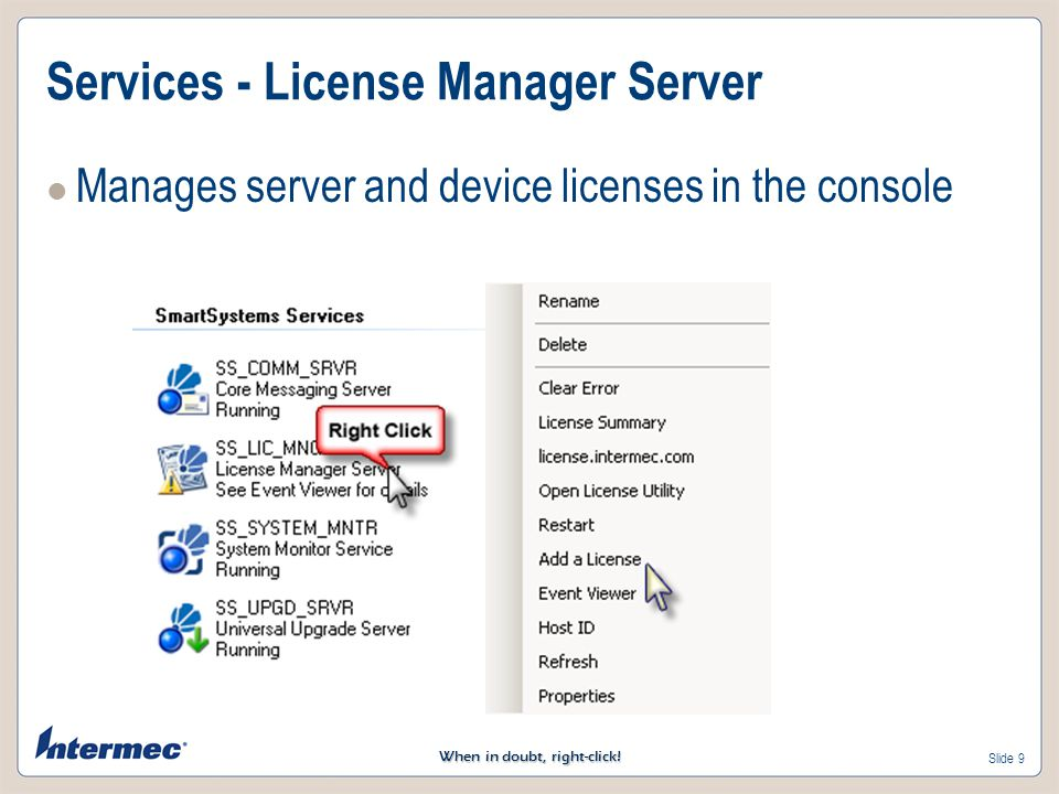 Services - License Manager Server