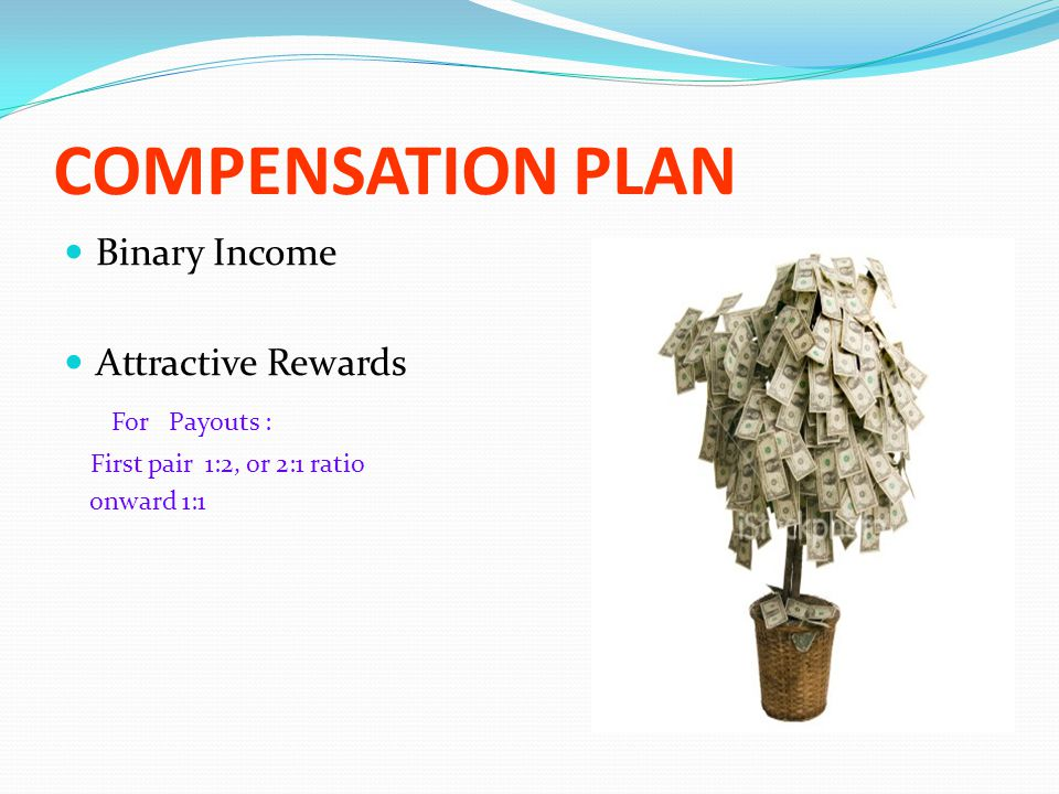 COMPENSATION PLAN Binary Income Attractive Rewards For Payouts :