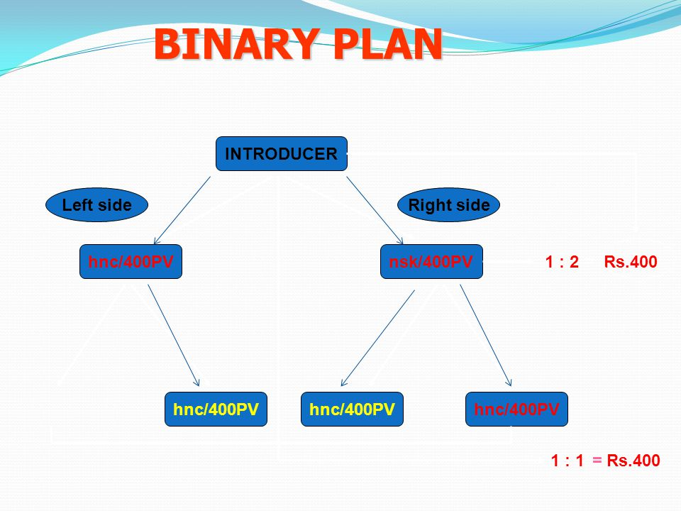 BINARY PLAN INTRODUCER Left side Right side hnc/400PV nsk/400PV 1 : 2