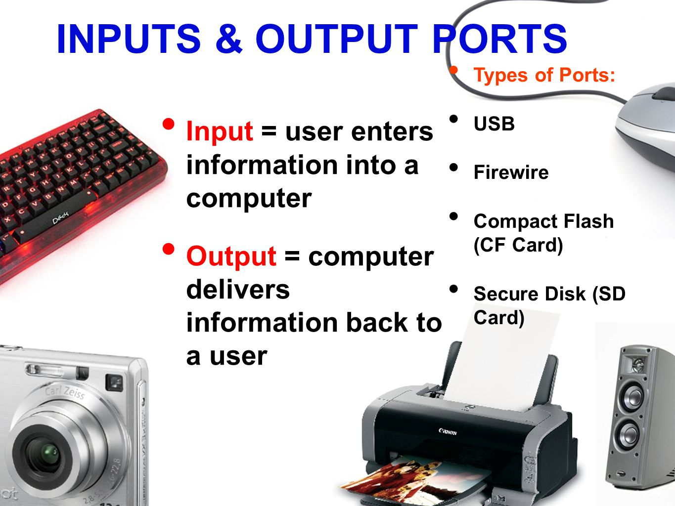 INPUTS & OUTPUT PORTS Input = user enters information into a computer