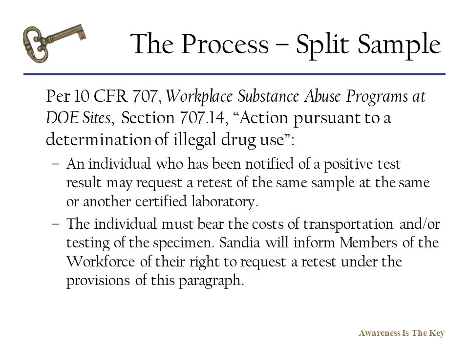 The Process – Split Sample