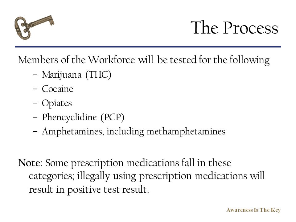 The Process Members of the Workforce will be tested for the following