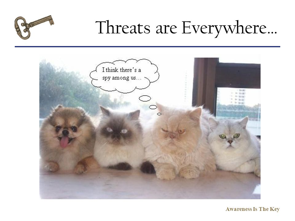 Threats are Everywhere…