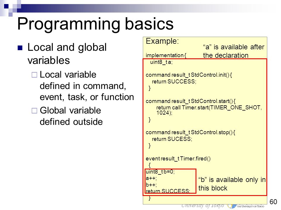 Programming basics Local and global variables
