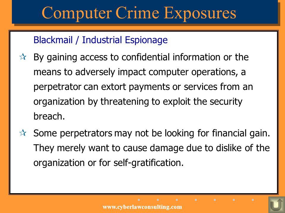 Computer Crime Exposures