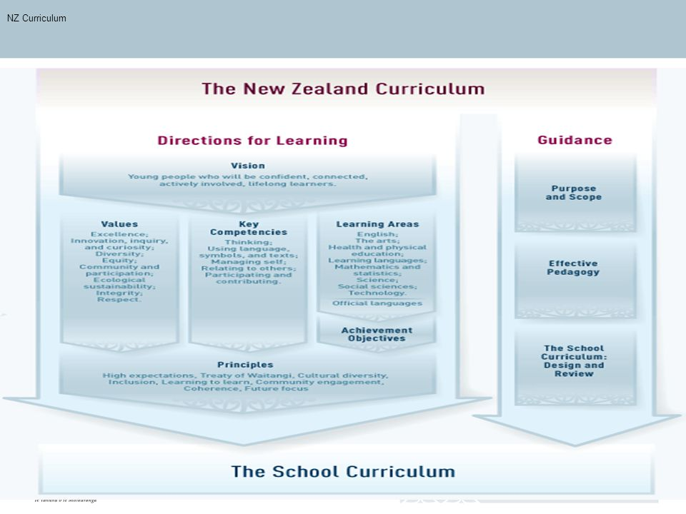 NZ Curriculum NZC Overview scan. New curriculum is only of use if it influences teaching and learning practice.
