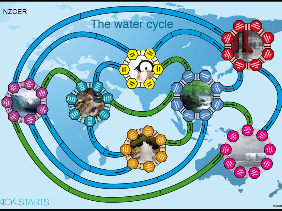 NZCER More complex representation of concepts such as the water cycle.