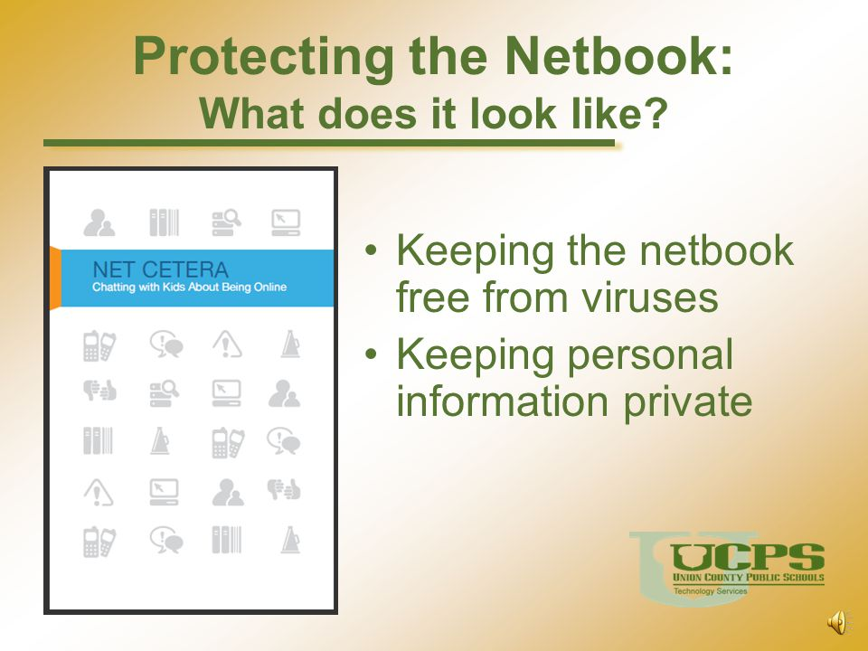 Protecting the Netbook: What does it look like