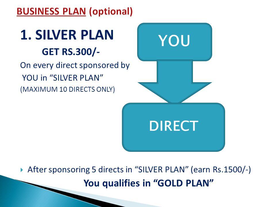BUSINESS PLAN (optional)