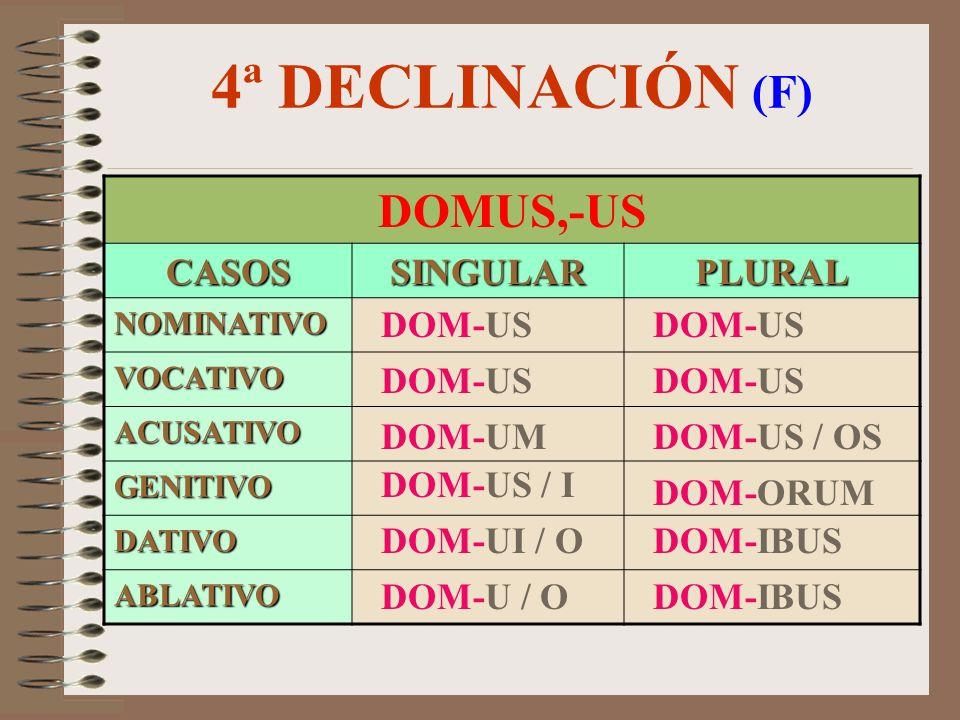 4ª DECLINACIÓN (F) DOMUS,-US CASOS SINGULAR PLURAL DOM-US DOM-US