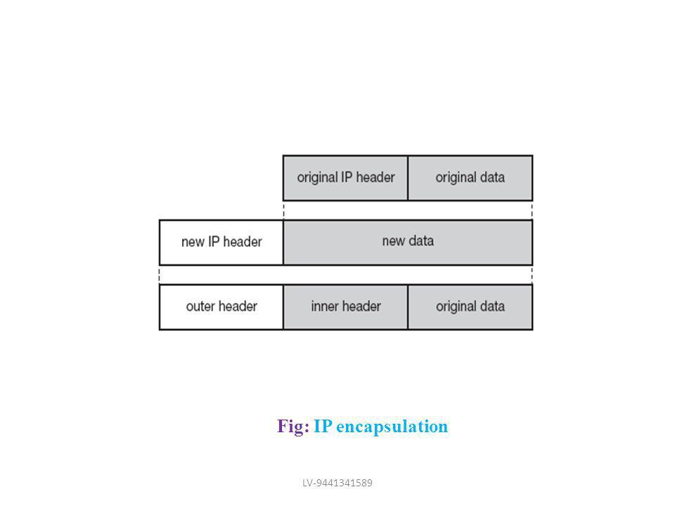Fig: IP encapsulation LV-9441341589