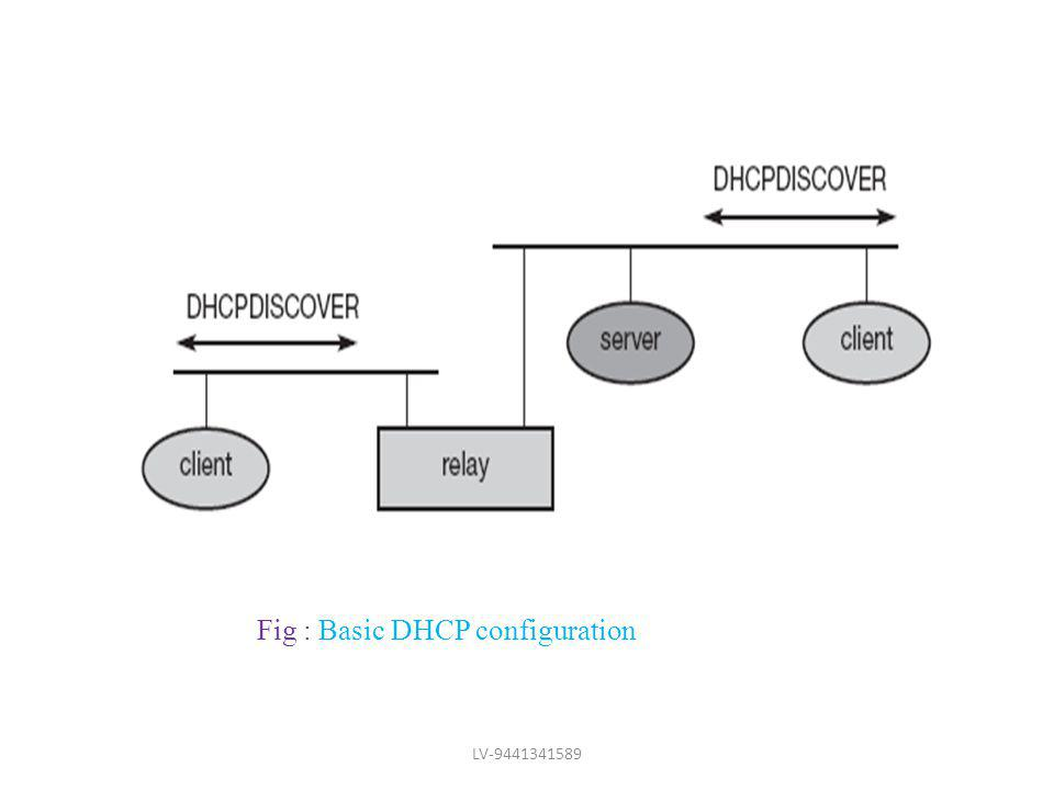 Fig : Basic DHCP configuration