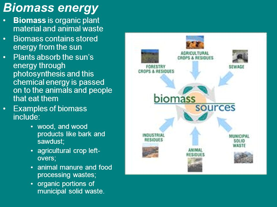 Biomass energy Biomass is organic plant material and animal waste