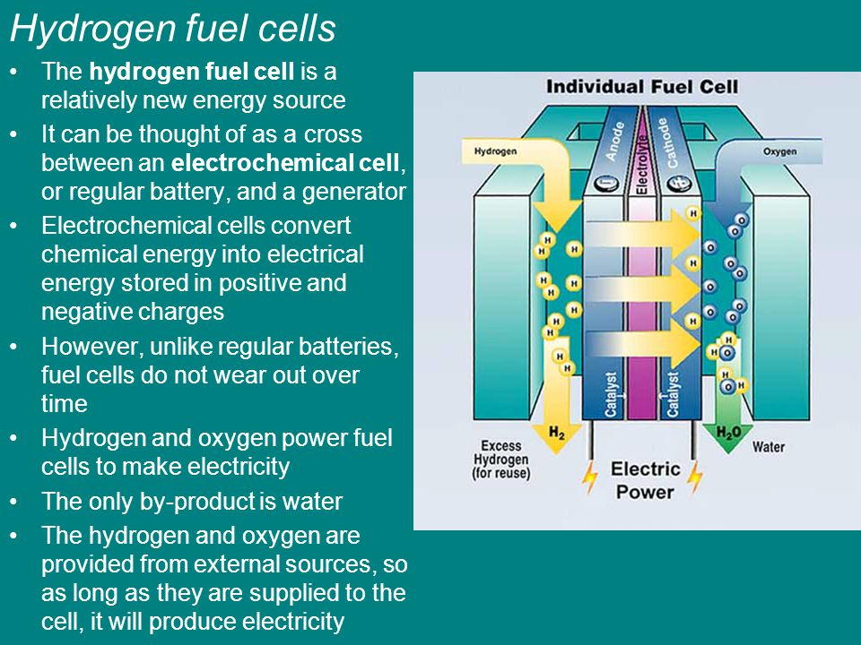 Hydrogen fuel cells The hydrogen fuel cell is a relatively new energy source.