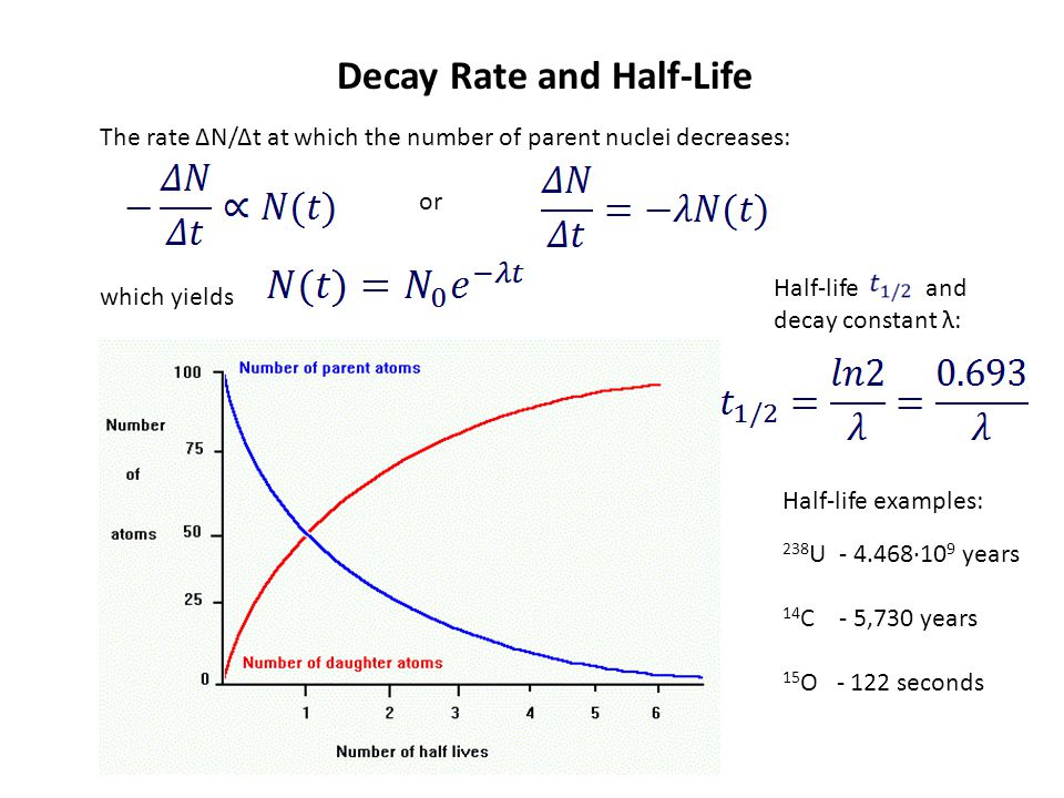 Decay Rate and Half-Life