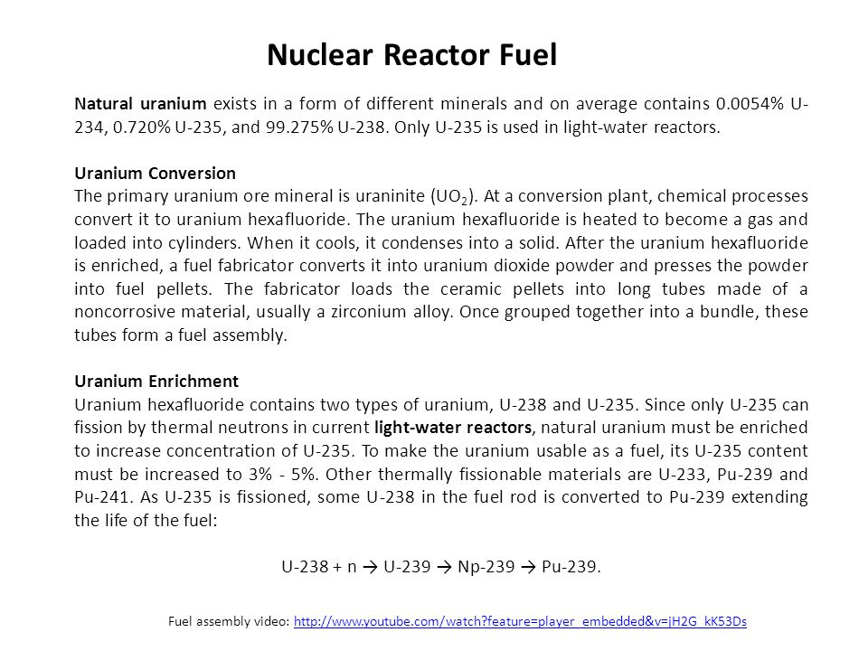 Nuclear Reactor Fuel
