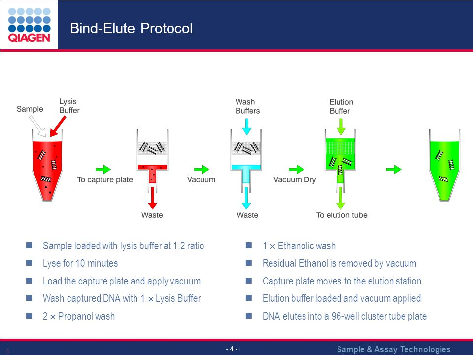 Bind-Elute Protocol Sample loaded with lysis buffer at 1:2 ratio