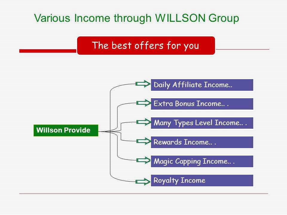 Various Income through WILLSON Group