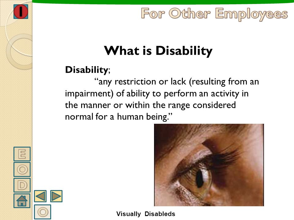 For Other Employees What is Disability E O D O Disability;