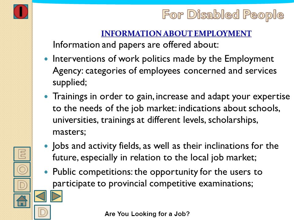 INFORMATION ABOUT EMPLOYMENT