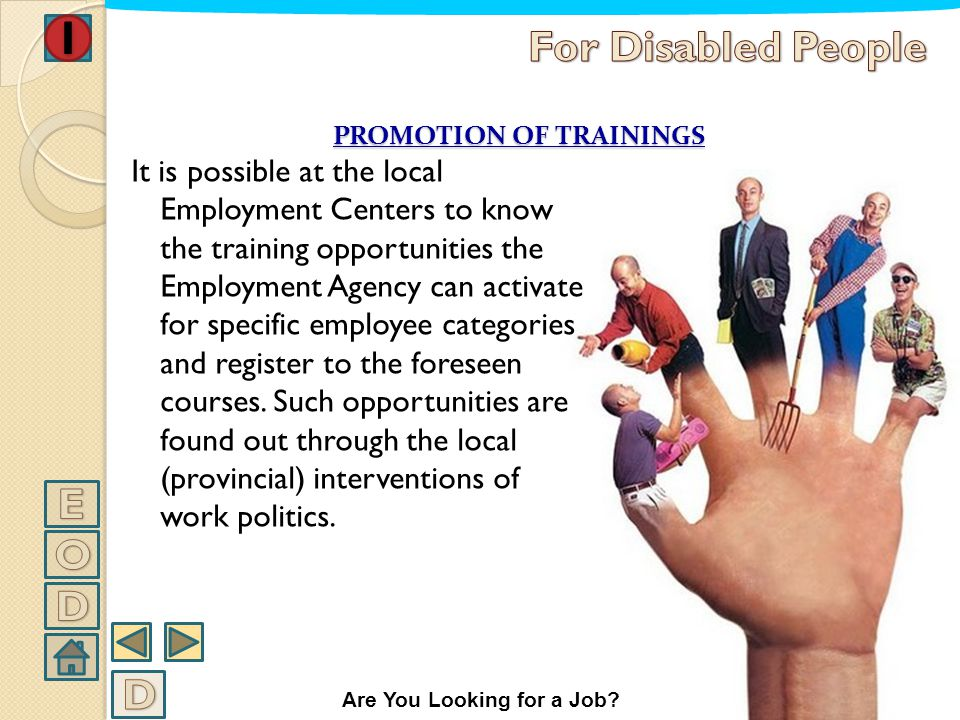 PROMOTION OF TRAININGS