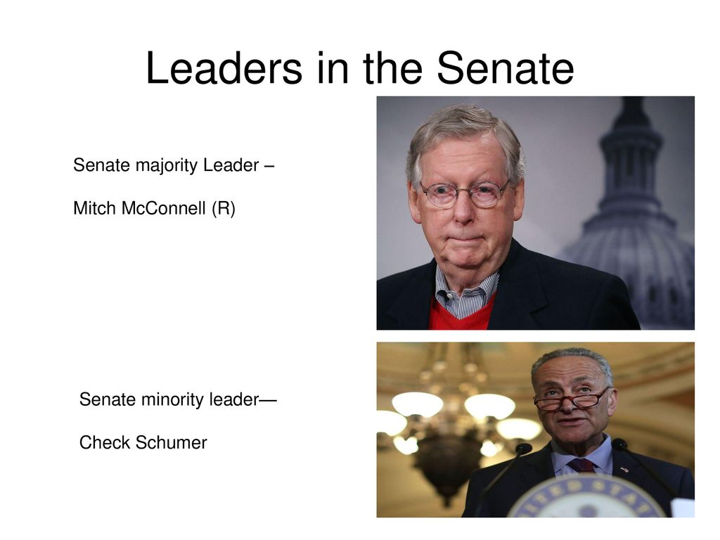 Leaders in the Senate Senate majority Leader – Mitch McConnell (R)