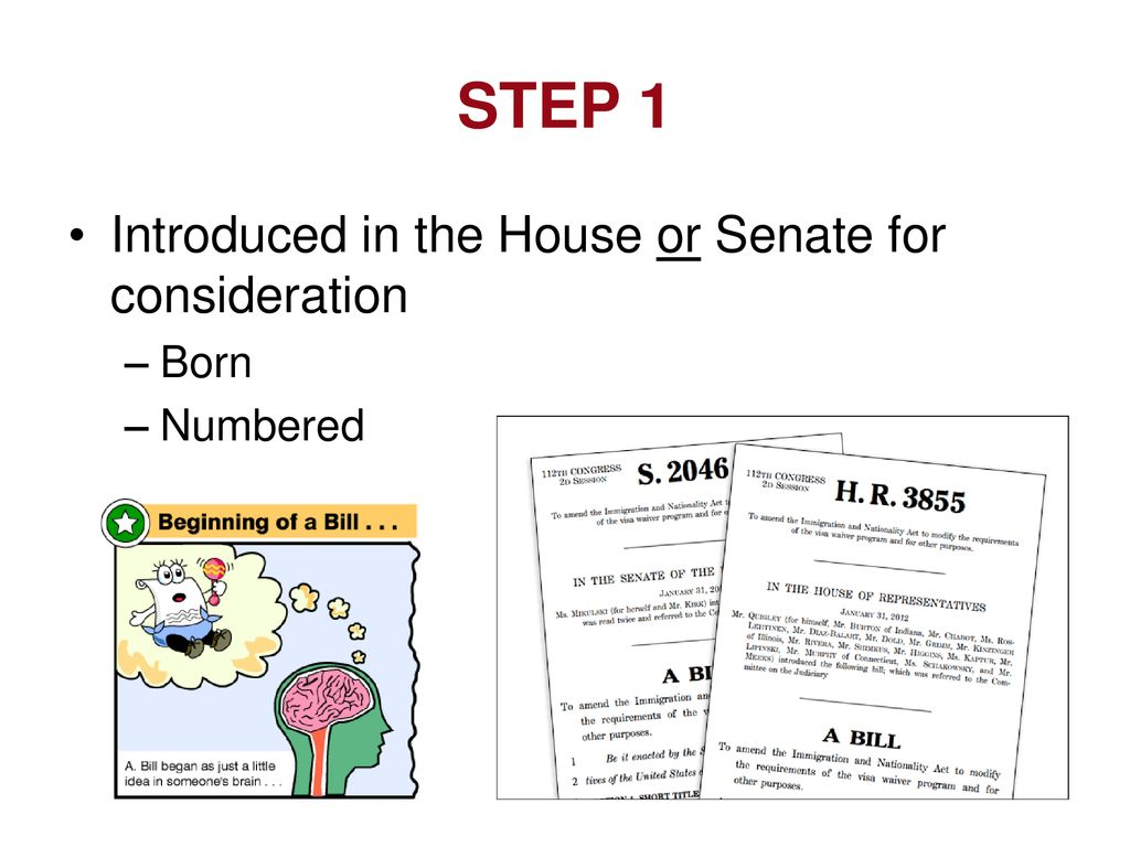 STEP 1 Introduced in the House or Senate for consideration Born