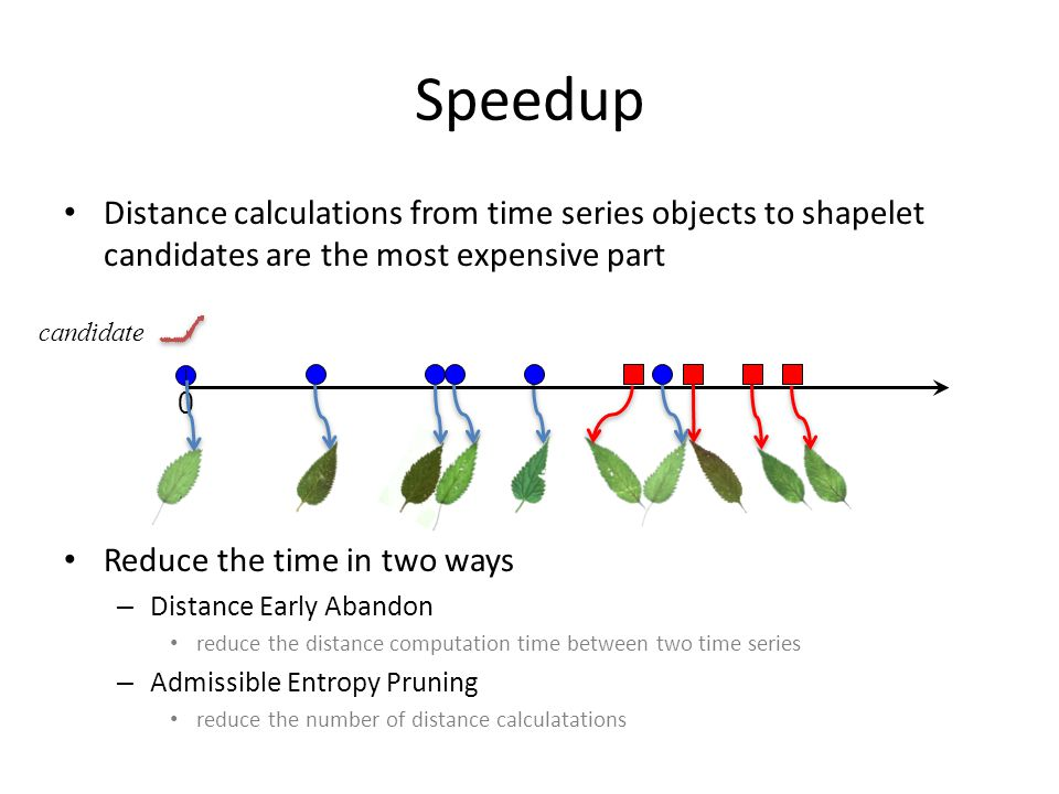 Speedup Distance calculations from time series objects to shapelet candidates are the most expensive part.