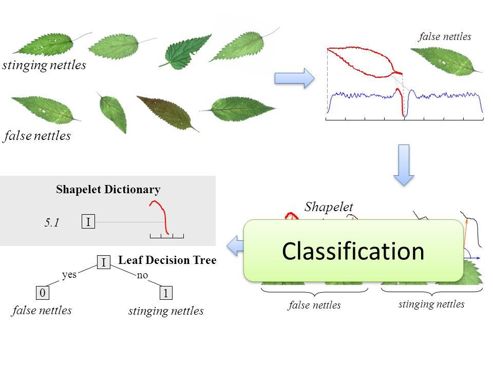 Classification stinging nettles false nettles Shapelet