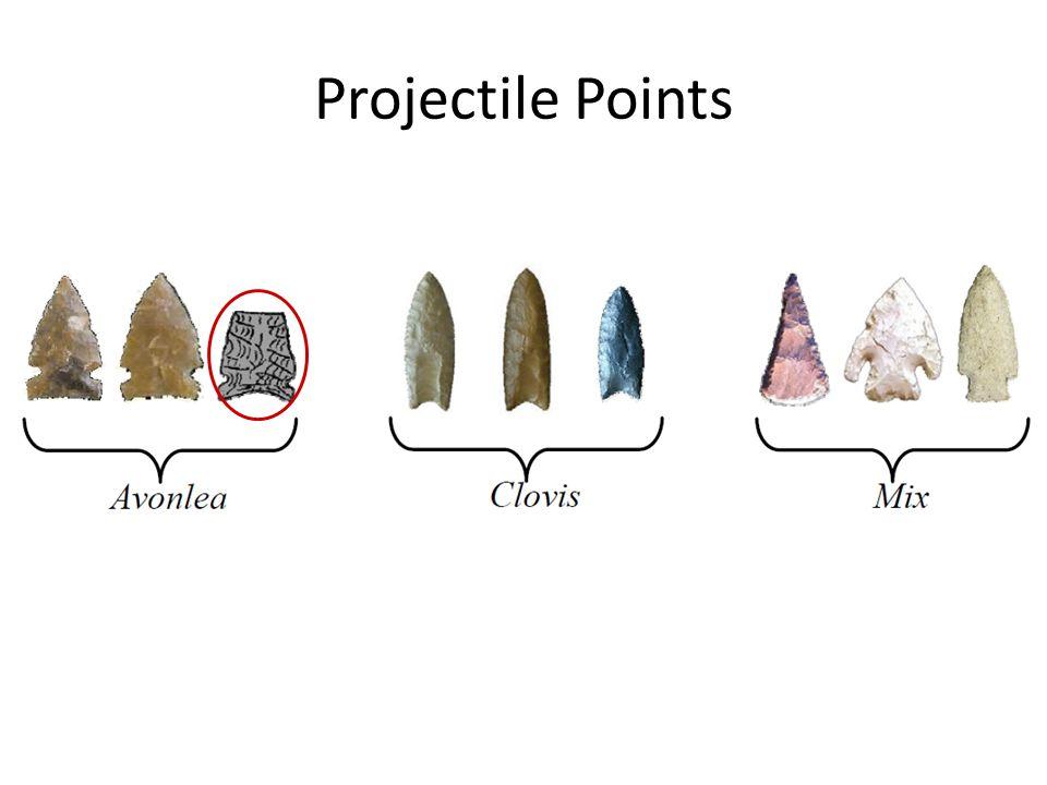 Projectile Points