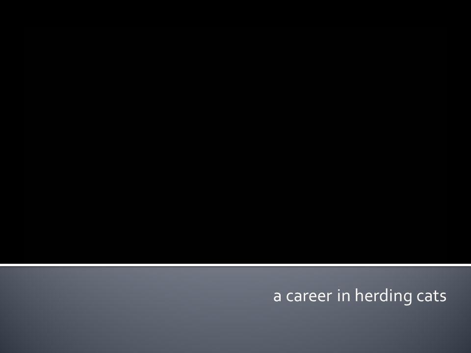 a career in herding cats