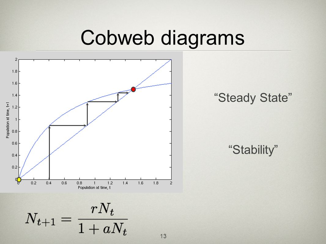 Cobweb diagrams Steady State Stability