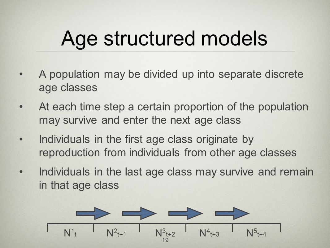 Age structured models A population may be divided up into separate discrete age classes.