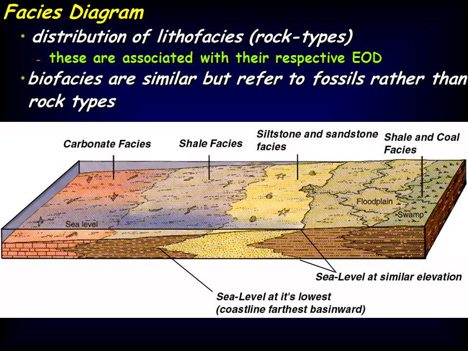 Facies Diagram • distribution of lithofacies (rock-types) •