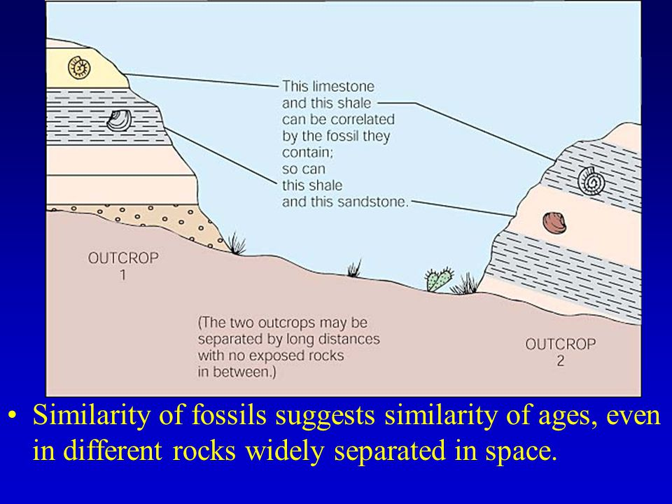 Similarity of fossils suggests similarity of ages, even in different rocks widely separated in space.