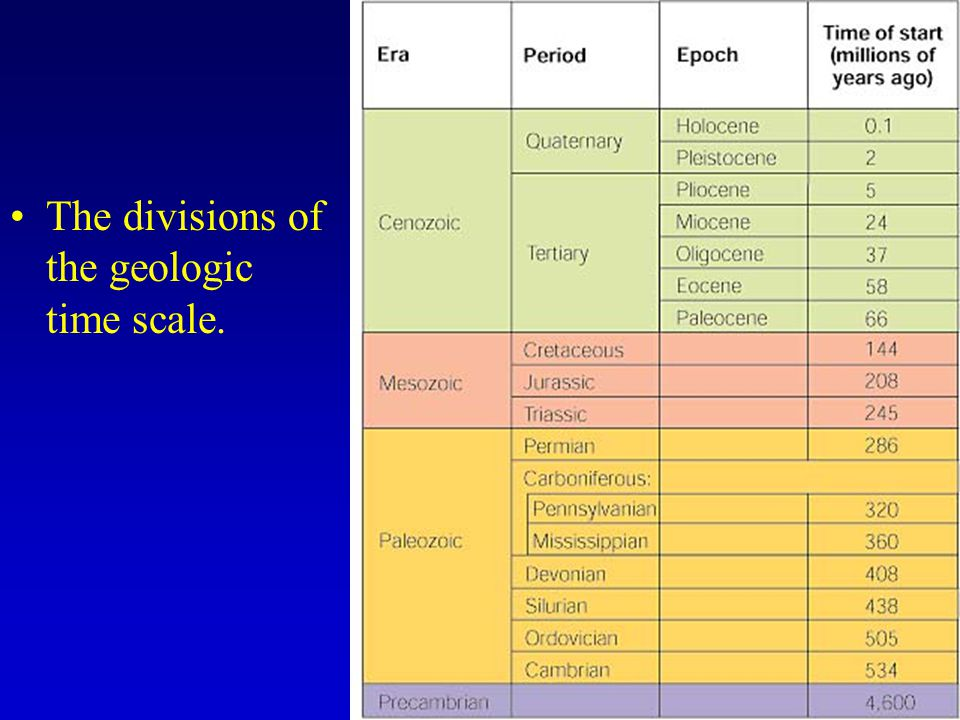 The divisions of the geologic time scale.