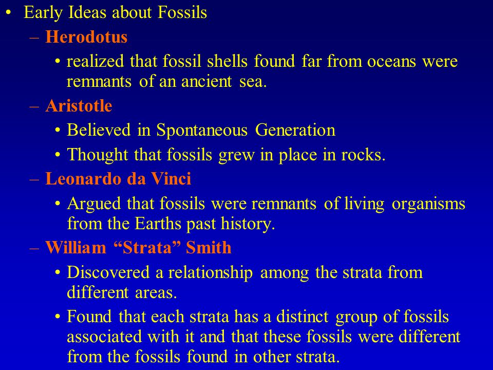 Early Ideas about Fossils
