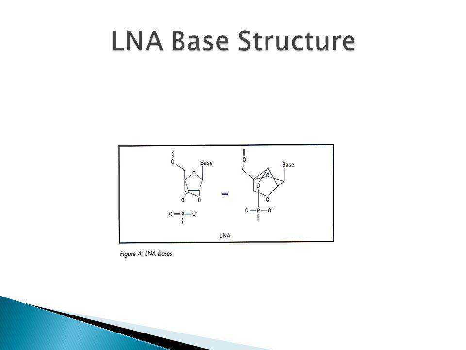 LNA Base Structure