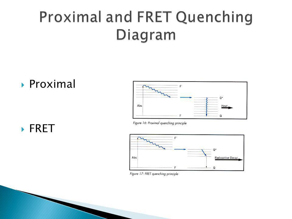 Proximal and FRET Quenching Diagram