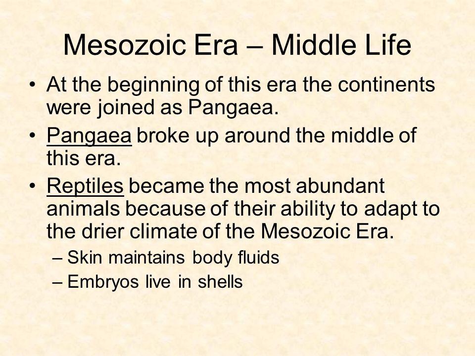 Mesozoic Era – Middle Life