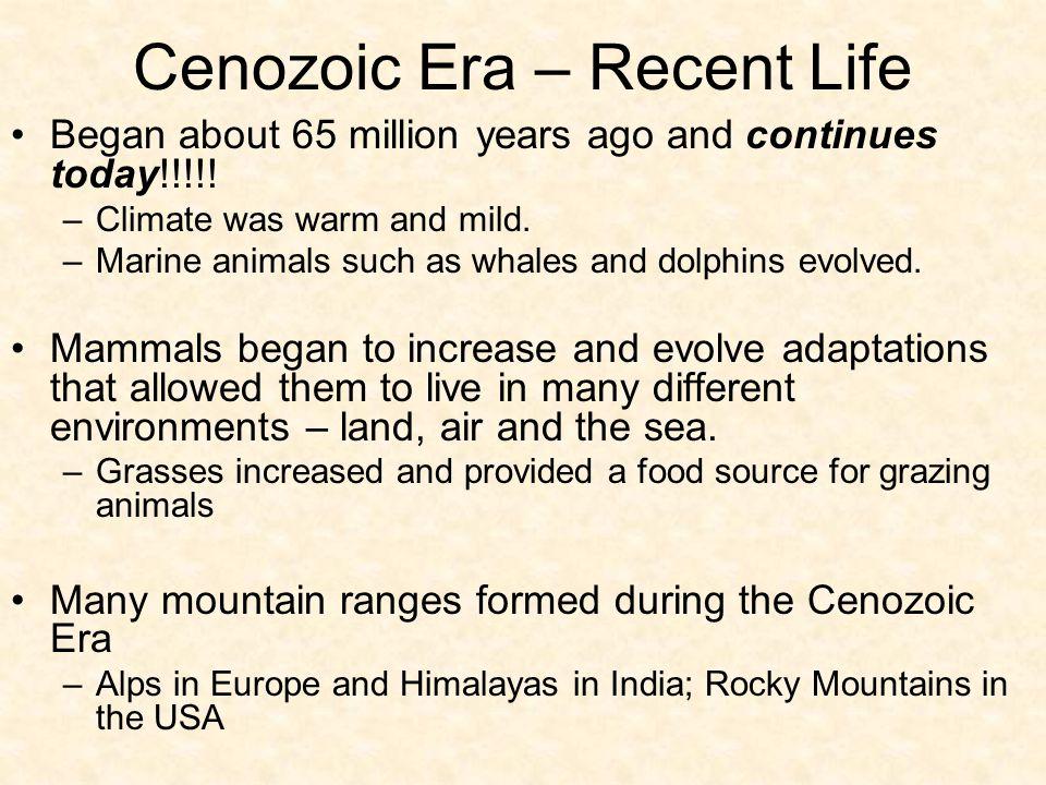 Cenozoic Era – Recent Life
