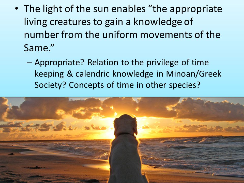 The light of the sun enables the appropriate living creatures to gain a knowledge of number from the uniform movements of the Same.