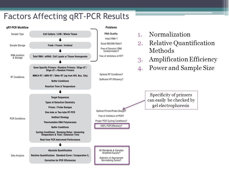 Factors Affecting qRT-PCR Results