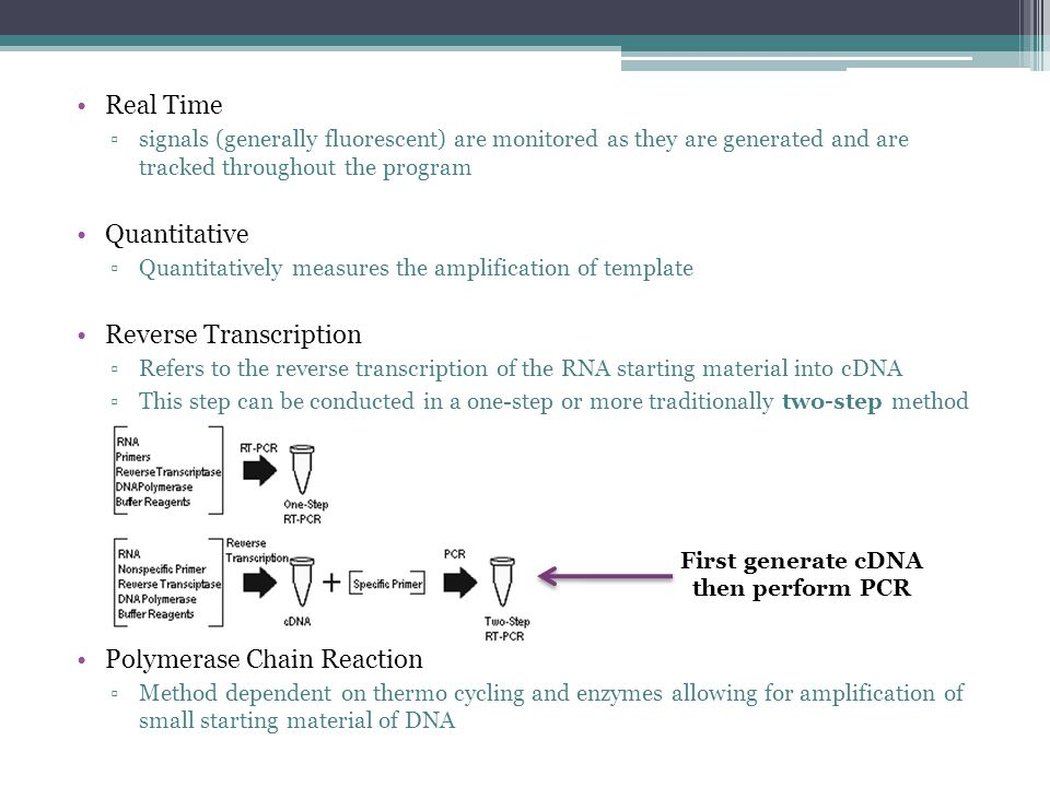 First generate cDNA then perform PCR