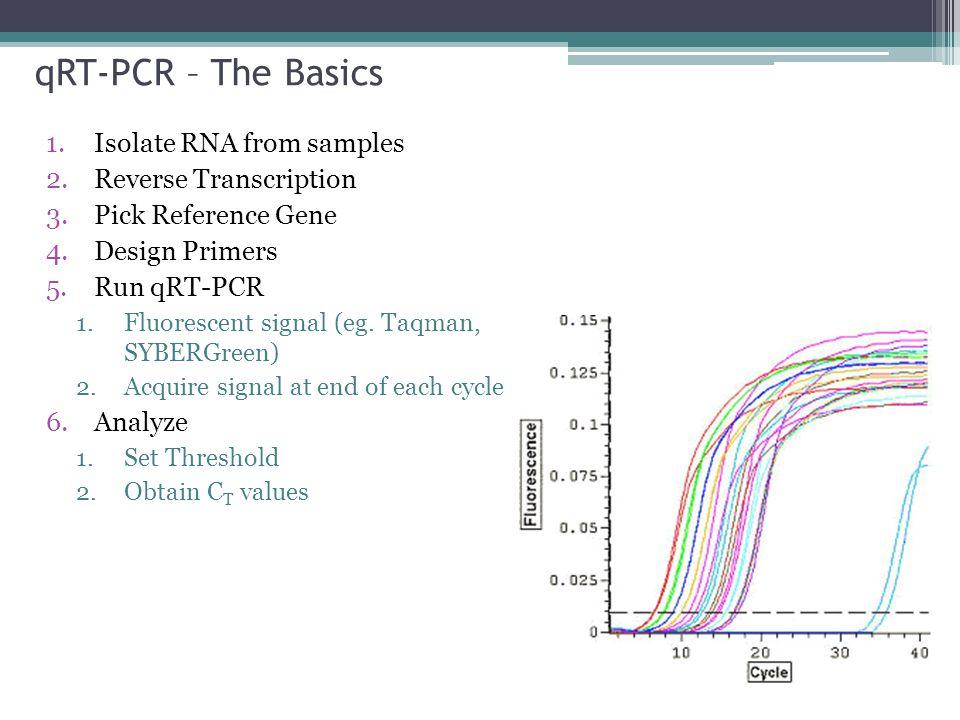 qRT-PCR – The Basics Isolate RNA from samples Reverse Transcription