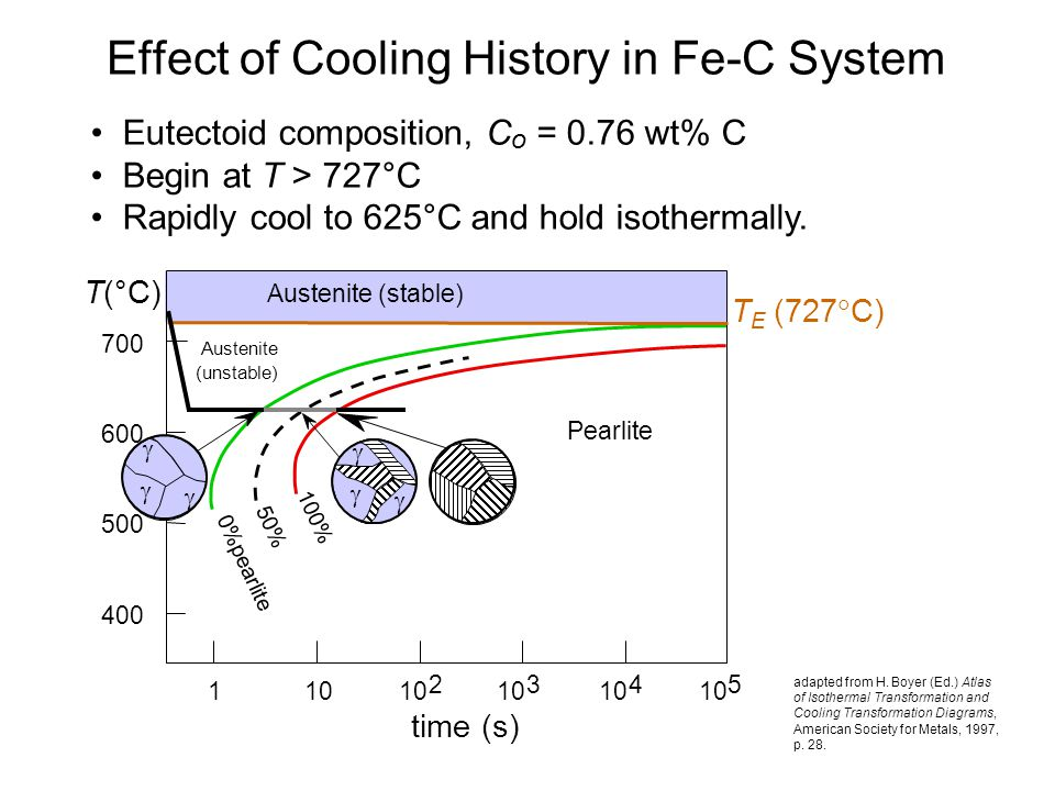 Effect of Cooling History in Fe-C System