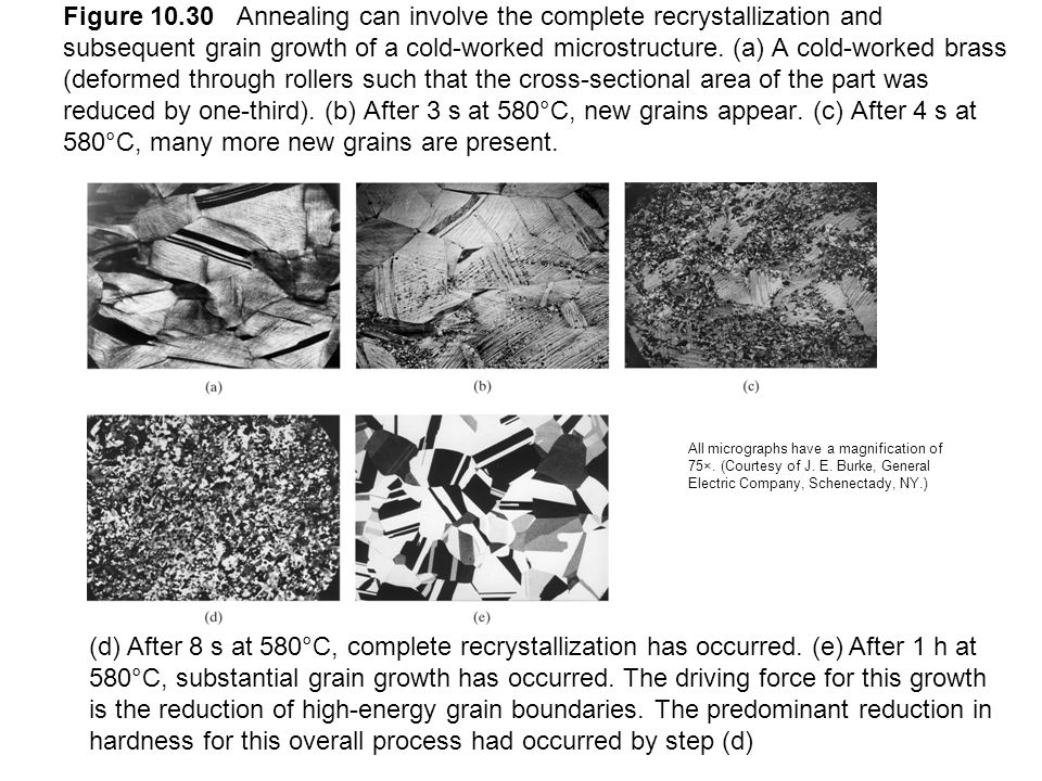 Figure 10.30 Annealing can involve the complete recrystallization and subsequent grain growth of a cold-worked microstructure. (a) A cold-worked brass (deformed through rollers such that the cross-sectional area of the part was reduced by one-third). (b) After 3 s at 580°C, new grains appear. (c) After 4 s at 580°C, many more new grains are present.